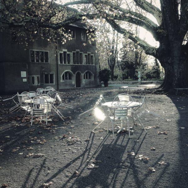 Schwarz-weiß-Afnahme im Gegenlicht. Unter einer riesigen alten Platane mit wenig Laub steht eine glänzende Garnitur mit Tisch und Stühlen in einem Innenhof. Lange Schatten reichen in Richtung BetrachterIn.