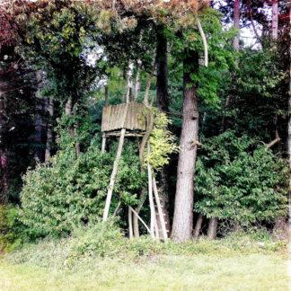 Ein verwunschen wirkender Jagdhochsitz am Waldrand. Überwuchert von Zweigen und Ästen neben einem dicken Baumstamm. Grundfarbe ist blasses olivgrün.