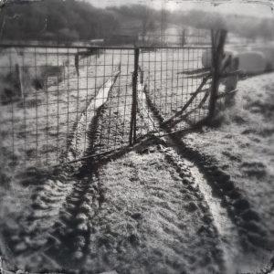 Eine schwarz-weiße traktorspur führt auf einen gitterförmigen Weidezaun zu und unter ihm hindurch bis auf die Parzelle