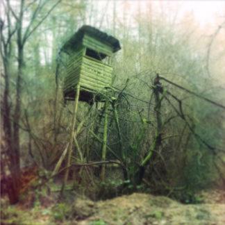 Schräg nach rechts geneigter, verwachsener Hochsitz vor einem fehlfarbig olivgrünen Waldrand mit rötlichen Einsprenkelungen wie bei Kameralecks alter Fotoapparate