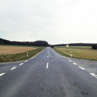 Schnurgerade graue Straße bei einer Kreuzung, zentral fotografiert. Bedeckter Himmel und Außer vegetationsperiodische Fleder.