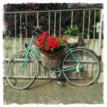 Türkisfarbenes Fahrrad mit roter Blumendekoration vor einfachem Stahlzaun mit dünnen, weit auseinander stehenden senkrechten Stäben.