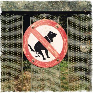 Selbst gemaltes Verbotsschild an einem Gartenzaun zeigt einen Hund beim Defäkieren, der mit rotem Balken durchgestrichen ist