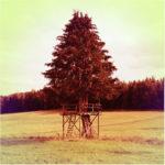 Rotbräunlich verfärbte Fehlfarbenaufnahme einer Lichtung am Waldrand, auf der ein mächtiger Nadelbaum umbaut ist von einem grßen Hochsitz, dessen Plattform unterhalb der Äste verläuft.