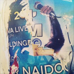 Mehrere zerfetzte, übereinander gelegte Werbeplakate ergeben eine Zufallscollage, in der markant ein behaarter offenbar Affenarm ein Mikrofon reckt. Verschiedene Daten in Schrift und der Name Naido ist ansatzweise zu lesen.