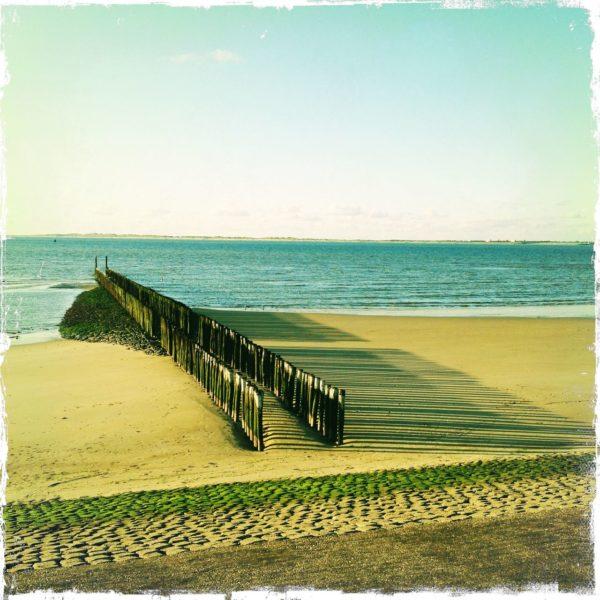 Strand mit hölzernen Wellenbrechern, grünlich bis gelblich fehlfarbig. Die Pfähle werfen lange Schatten nach rechts auf den Sand.