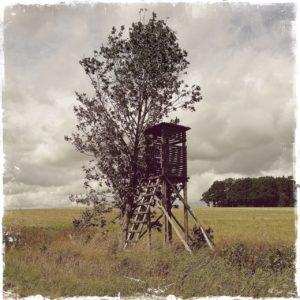 Auf freier Flur ein einzelner kleiner Baum neben einem schwarzen Hochsitz