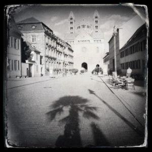 Schwarzweiß-Version der Flucht blickend auf den zweitürmigen Speyrer Dom durch eine breite Stadtstraße. Am Standort des Fotografen wirft eine Palme einen langen Schatten in Richtung Dom und verdeckt somit den Schatten des Fotografen.