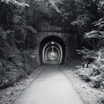 Schwarzweiß-Bild eines geraden, beleuchteten alten Eisenbahntunnels, durch den ein schmaler, geteerter Bahntrassenradweg führt.Umrankt von Pflanzen an den Hängen und überm Scheitel der Tunnelöffnung.