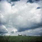 Ein Großteil des Bilds ist von dicken teils dunklen Wolken belegt, darunter ein schmaler Streifen Viehweide und Vieh am Horizont