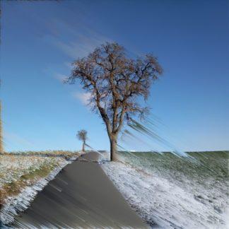 Birnbaum neben leicht verschneitem grün durchschimmerndem Wegrand an geteertem Weg vor blauem, fast unbewölktem Himmel, abstrakt verfremdet durcu lineare Pixelwiederholung in einem von links oben nach rechts unten abfallenden 45 Grad Winkel.