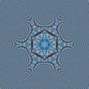Die blaugraue fraktale, sich in unendlicher Kleinheit verlierende Struktur nimmt gegen Bildmitte zunächst eine Sternform mit fraktalen stumpfen Spitzen an und konstruiert im Zentrum ein deutliches, bräunliches Sechseck, in dessen Zentrum sich weitere Stern- und Fraktalformen wieder Richtung unendlich klein verlieren.