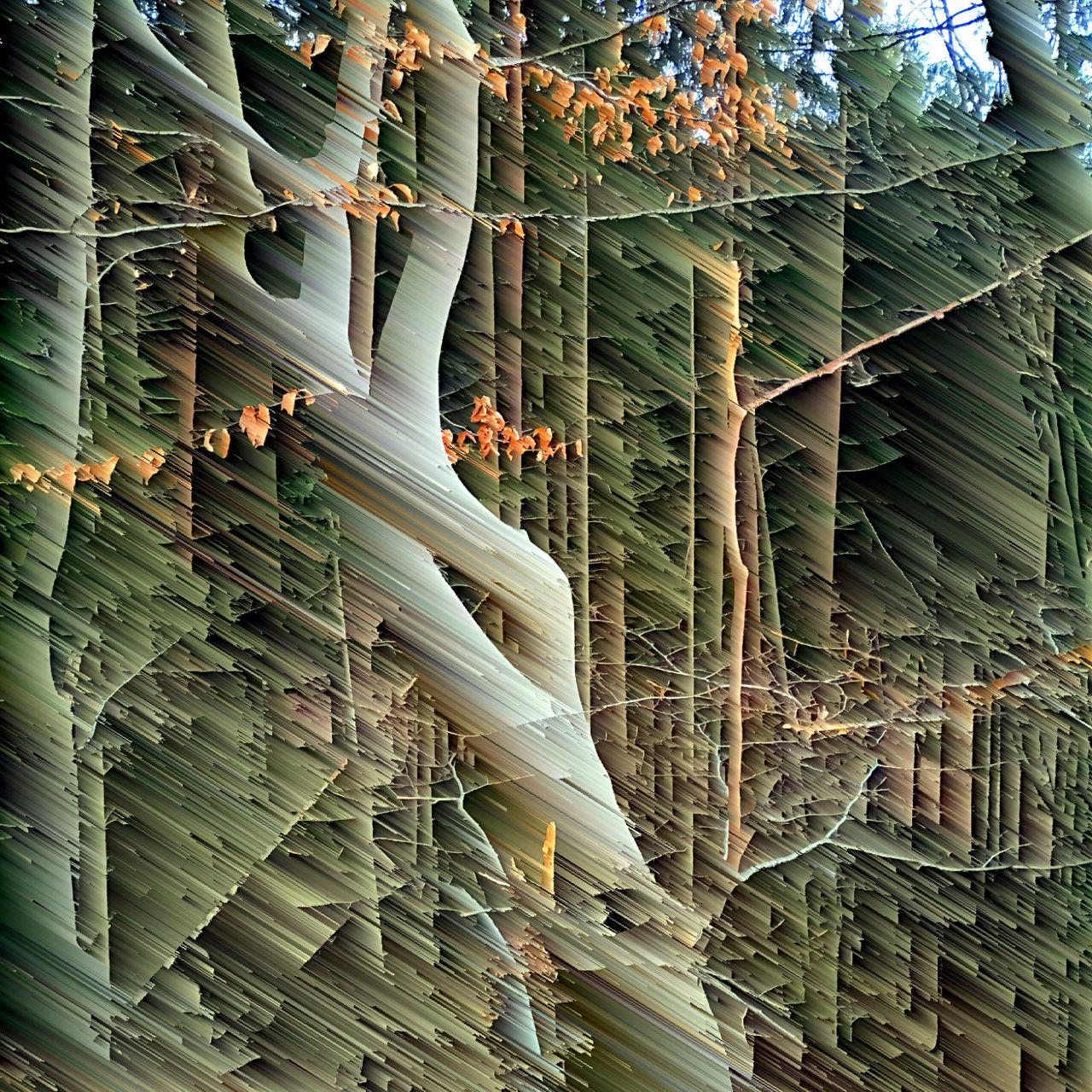 Zerstörerisch zerlegtes Bild eines markanten, sich drehenden Bäumchens. das einst klare normale Foto besteht aus Streifen im 45 Grad Winkel. Dennoch ist das Original deutlich als detailierte Waldszene erkennbar.