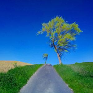 Blau und grün übersättigtes Bild eines einzelstehenden Baums am Wegrand. Durch zerstörerische Bearbeitung wird das Landschaftsfoto zum impressionistischen, strahlenden elektronischen Gemälde.