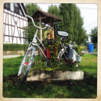 Weiß gespraytes, kleines Damenrad mit eingeschlagenem Lenker und Blumen bestückt in einer Underfoot-Betrachtung vor einem Fachwerkhaus und blauer Mülltonne.