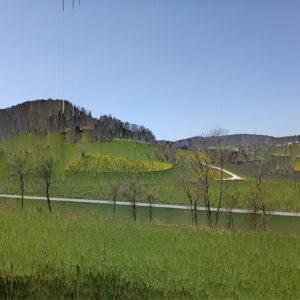 Fast unkenntlich bzw. wie mit starker senkrechter Schraffur gemalt liegt eine hügelige Landschaft grün und graublau. Streuobstbäume sind zu erahnen.
