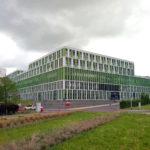 Die angelegte Wiese, durchbrochen von zwei Zeilen verdorrter Gräser wirkt kontrastreich vor einem modernen, offenbaren Klinikgebäude, dessen Fensterteilung mit grün-weißen länglichen Wandverkleidungen im Wettstreit liegt.
