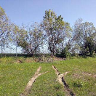 Tief gräbt sich eine Reifenspur in eine Wiese, schlägt nach rechts einen Haken. Begrenzt von einer Baumreihe unter graublauem Himmel.