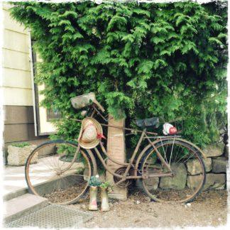 Ein uraltes rostiges Fahrrad steht von rechts nach Links vor einer kleinen Sandsteinstele. Am Lenker hängt ein Sonnenhut. Gummistiefel mit Blumen bepflanzt garnieren die Szene.