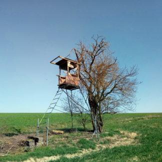 Lichte Ackerszene im Frühling. Hochsitz mit Stahlleiter zur Linken direkt neben einem noch nicht beblätterten Baum. Grüne Wiese unter graublauem, wolkenlosem Himmel.