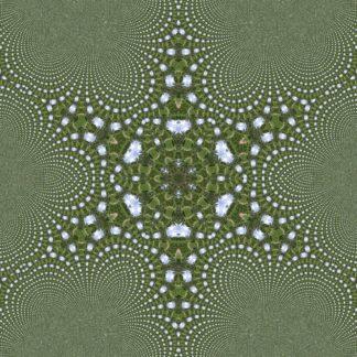 Grau-grünliches Bild eines sechszackigen Sterns mit geschwungenen Ecken. Fraktale Struktur.
