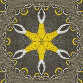 Schlichtes Gelb erhebt sich in sechs Zacken aus der Mitte und verliert sich in weißvaginalen Strukturen, die von einem fraktalen Kranz gesäumt werden.
