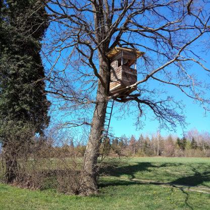 Vor blauem Himmel ieseln die feinen Zweige eines frühlinghaft kahlen Baums, an dessen rechter Flanke wespennenstgleich ein Hochsitz klebt.