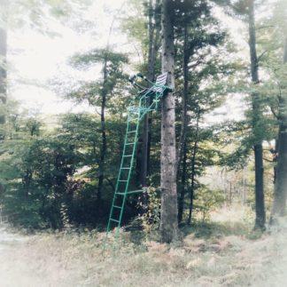 Hochsitz mit grüner Stahlleiter lehnt an einem Baum.