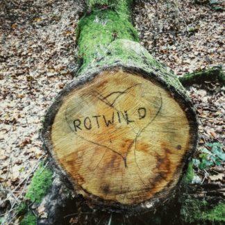 Mit Filzstift hat jemand das Wort Rotwild in Grßbuchstaben auf die Schnittfläche eines abgesägten Baumstamms geschrieben. Der bemooste Stamm liegt im Herbstlaub.