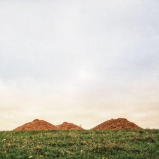 Erdhaufen schimmern orange über grüner Wiese und wirken wie ferne Berge.